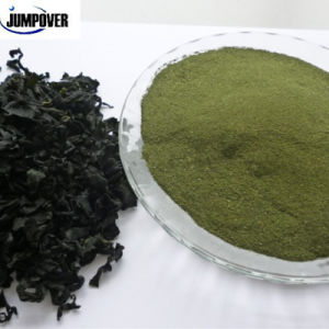 Organic Fertilizer Seaweed Meal Fish Feed Chicken Feed Animal Feed pictures & photos
