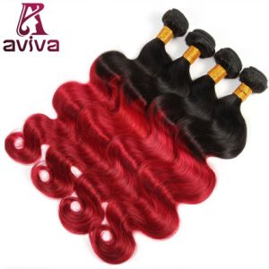 Body Wave Ombre Natural Virgin Hair Extension pictures & photos