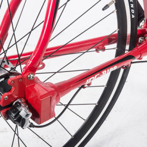 Disc Brake 3-Speed No Folding Shaft Drive Road Bike pictures & photos