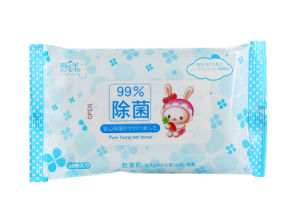 99% Pure Water Natural Cleaning Baby Tissue Small Pouch (WW006) pictures & photos