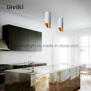45 Degree Beam Angle Surface Mounted LED Down Light 7W pictures & photos