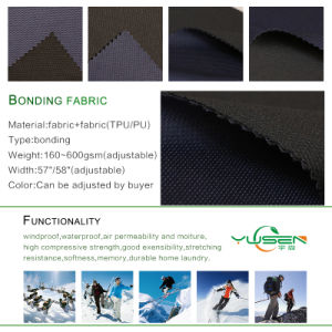 Bonded and Punching Knitted Birdeye Mesh Fabric for Garments pictures & photos