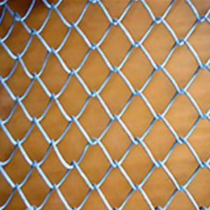 Galvanized/PVC Coated Chain Link Fence/Stainless Steel Chain Link Fence pictures & photos