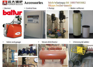 High Quality 1ton 2ton 3ton 4ton 5ton 6ton 8ton 10ton 15ton 20ton Gas Fired Steam Boiler pictures & photos
