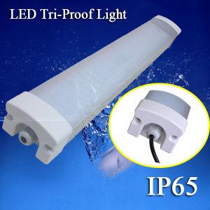 1.2m 4FT 40W LED Tri-Proof Tube Light LED Tube Lamp pictures & photos