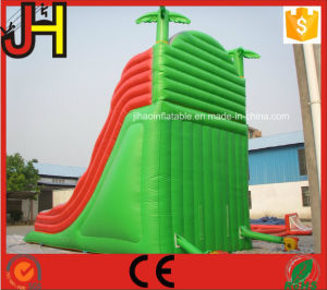 Large Inflatable Slide Giant Inflatable Water Slide Inflatable Pool Slide pictures & photos