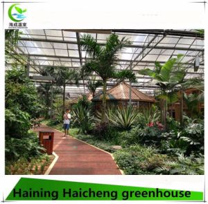 Fashion Greenhouse for Vegetable Growing pictures & photos