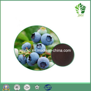 Hot Selling Anti-Oxidant Blueberry Extract Anthocyanidins 5%~35%; Pterostilbene 1%-20% pictures & photos