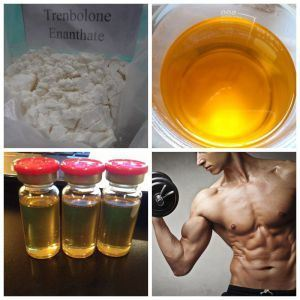 Raw Steroid Powder Parabolan/Trenbolone Enanthate for Muscle Growth pictures & photos
