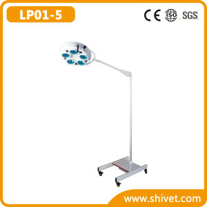 Veterinary Cold Light Operating Lamp (on Stand) (LP01-5) pictures & photos