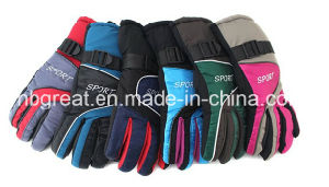Warm Waterproof and Windproof Ski Gloves with Reinforced Palm pictures & photos