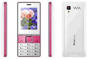 OEM Wholesale Elders Mobile Phone Cheap 2.4 Inch Feature Mobile Phone C20 pictures & photos