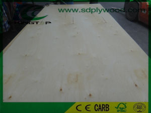 Birch Plywood E Grade Back for USA Market pictures & photos