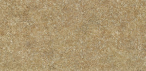600X1200mm 4.8mm Porcelain Thin Tile for Flooring pictures & photos
