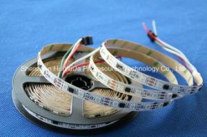 LED Light & Lighting Decoration LED Strip Light DC12-24V pictures & photos
