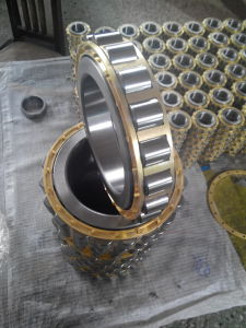 NSK Rn206m Cylindrical Roller Bearing pictures & photos
