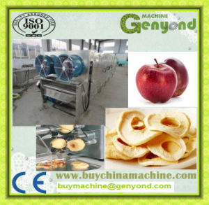 Complete Apple Chips Production Machines pictures & photos