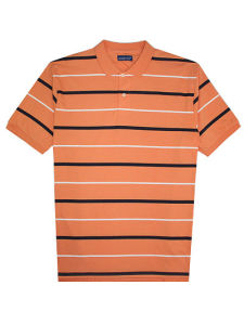 Big Size Cotton Lycra Jersey Striped Man′s Polo Shirt of V-Neck pictures & photos