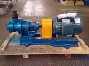 Nyp7 High Viscosity Internal Gear Oil Pump pictures & photos