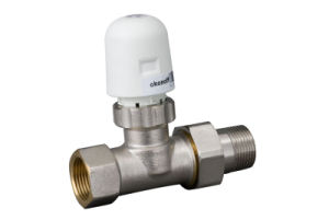 Two Way Room Heating Thermoelectrical Brass Valve (CHV320) pictures & photos