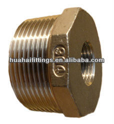 Bs Thread Stainless Steel Bushing/Cast Fittings Ss304