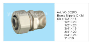 Compression Fittings for PEX Pipe pictures & photos