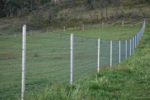 Grassland Security Wire Mesh Fence
