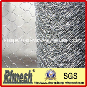 Hexagonal Wire Netting (02) pictures & photos
