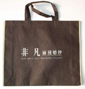 Shopping Bag (XT-B032) pictures & photos