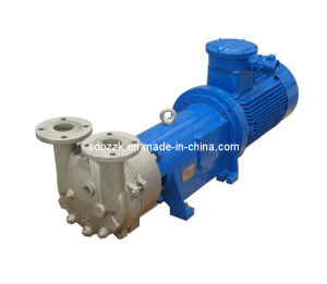 2BV6121 One/Single Stage Water Ring Vacuum Pump (price)