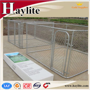 Hot DIP Galvanised Dog Kennel for Wholesale pictures & photos