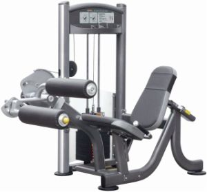 Steate Lge Curl Machine Fitness Strength Gym (IT9007)
