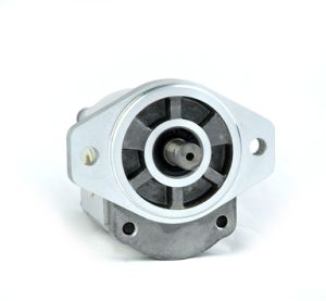 Gear Motor 2m**L**P02*