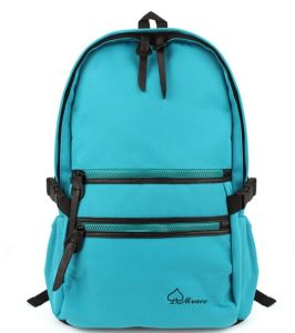 Entry Level Laptop Backpack Hiking Backpack (SB6375) pictures & photos
