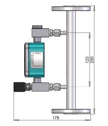 Variable Area Flowmeter (H-100) pictures & photos