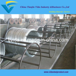 Hot Dipped Galvanized Steel Iron Wire pictures & photos