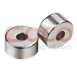 Ring NdFeB Permanent Magnets for Magnet Chuck pictures & photos