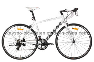 700c Alloy Road Bicycle (KSN-RB-04)