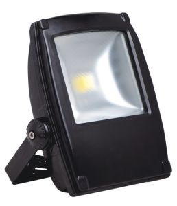 Retrofit Mould COB 30W LED Floodlight Bridgelux LED