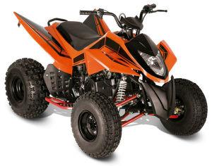 ATV SPORT 110CC (Kingmax 110S) pictures & photos