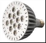 LED Spot Light With 12W