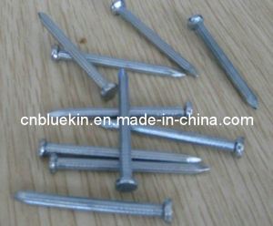 Concrete Nails pictures & photos