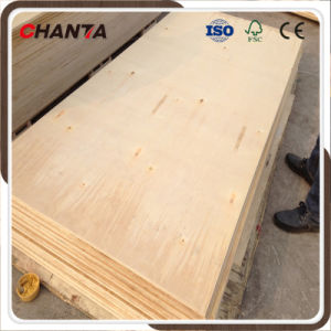 Birch Plywood for Construction Usage pictures & photos