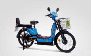 Heavy Cargo Electric Bicycle with Pedals (PB208) pictures & photos