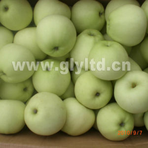 New Crop Fresh Golden Apple Grade a and B pictures & photos
