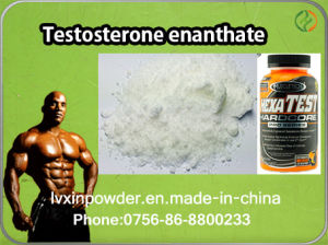 Testosterone Enanthate Raw Powder for Medicine Steroids pictures & photos