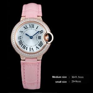 Famous Brand Wrist Watch OEM (Ctier05)