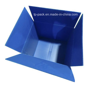 Plastic PP Corrugated Sheet Carton pictures & photos