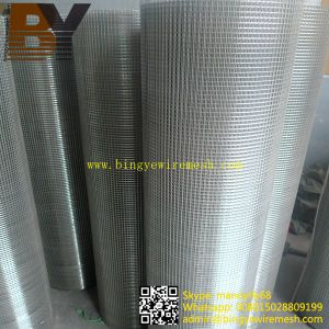 Bird Cage Stainless Steel Welded Wire Mesh pictures & photos