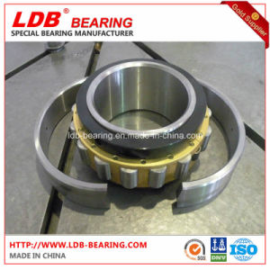 Split Roller Bearing 02b100m (100*193.68*92.1) Replace Cooper pictures & photos